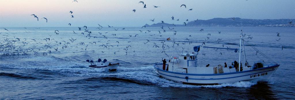 Pescadores en Xabia